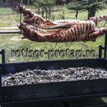 APOLLO – Protap rotisor vitel